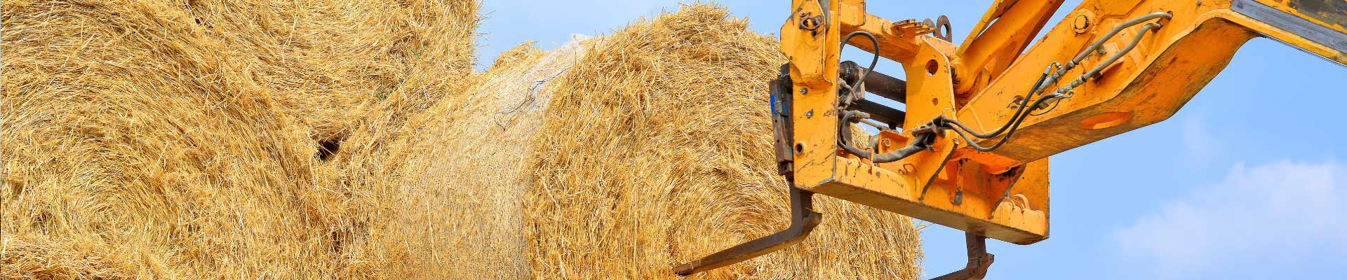 Des télescopiques agricoles multimarques d'occasion chez Tipmat
