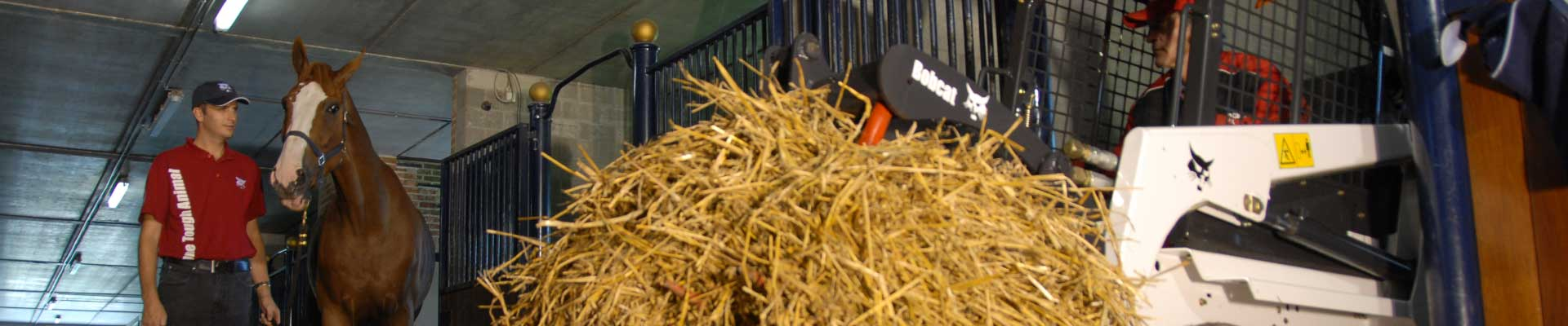 Chargeur agricole sur pneus Bobcat